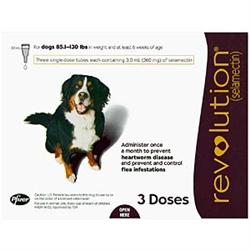 Revolution L Heartworm Prevention For Dogs And Cats Medi Vet