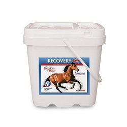 Recovery Eq Powder L Joint Support For Horses Medi Vet