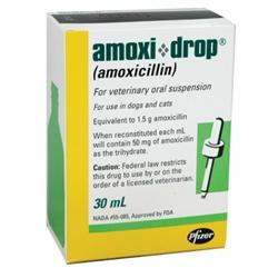 Amoxicillin l Antibiotic For Pets   Medi-Vet